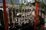 Japan 2012 - Osaka - Shrine - fortune papers