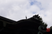Japan 2012 - Kyoto - Crane