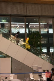 Japan 2012 - Tokyo - Shopping Mall - Chicken