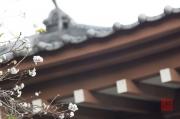 Japan 2012 - Kamakura - Hase-dera - Flowers & Roof