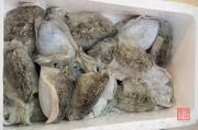 Japan 2012 - Tsukiji - Fish Market - Squids I