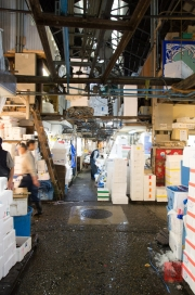 Japan 2012 - Tsukiji - Fish Market - Path