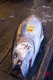 Japan 2012 - Tsukiji - Fish Market - Tuna II