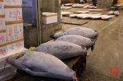 Japan 2012 - Tsukiji - Fish Market - Tuna Auction Hall II