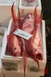 Japan 2012 - Tsukiji - Fish Market - Red Fish II