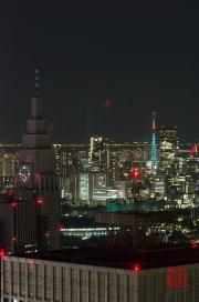 Japan 2012 - Shinjuku - Night Shoot III
