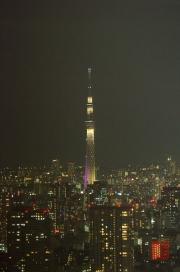 Japan 2012 - Shinjuku - TV Tower