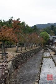 Japan 2012 - Miyajima - Creek