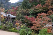 Japan 2012 - Miyajima - Daisho-in - Park I