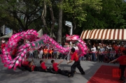 Taiwan 2012 - Taipei - Lin-Namens-Fest - Drachentanz  - Impression III