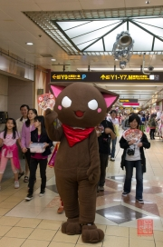 Taiwan 2012 - Taipei - Cosplayer - Katze