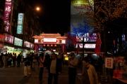 Taiwan 2012 - Taipei - St. Raohe Nachtmarkt - Eingangstor