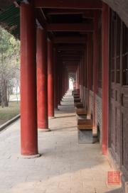 Xian 2013 - Stele Forest - Corridor