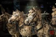 Xian 2013 - Terracotta Army - Chariot - Horses
