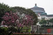 Chongqing 2013 - Congress Hall & Park