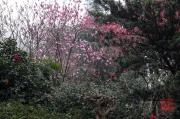 Chongqing 2013 - Eling Park