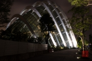 Singapore 2013 - Botanical Garden