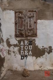 Saragossa 2014 - Street Art - Are you dead?