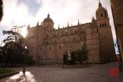 Salamanca 2014 - Cathedral