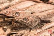 Cadiz 2015 - Market - Fish II