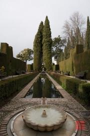 Granada 2015 - Alhambra - Garden III