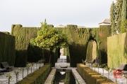 Granada 2015 - Alhambra - Garden IV