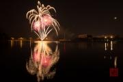 Spring Fair Fireworks Finale 2016 - Silver & Pink
