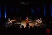 Tafelhalle Tingvall Trio 2016 I