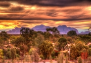 20161226_DSC_4783And8more_tonemapped_painterly2