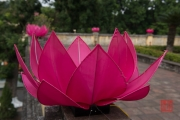 Hanoi 2016 - Lotus