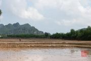 Phong Nha 2016 - Fields