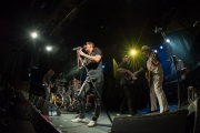 Hirsch Dr. Woo's Rock 'n' Roll Circus 2017 I